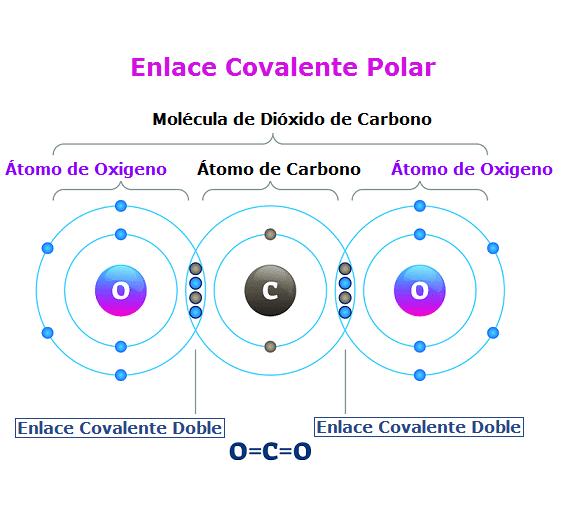 ejemplo enlace covalente polar molecula de dioxido de carbono