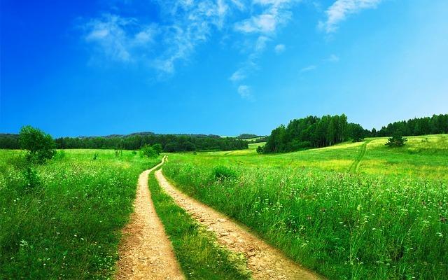 Diferencia entre paisaje rural y urbano
