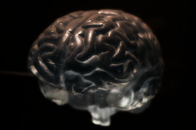 Diferencia entre Sistema Nervioso Simpático y Parasimpático