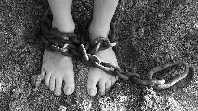 Diferencia entre presidio y prisión