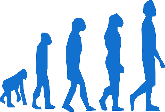 Diferencia entre Cromagnon y Neandertal