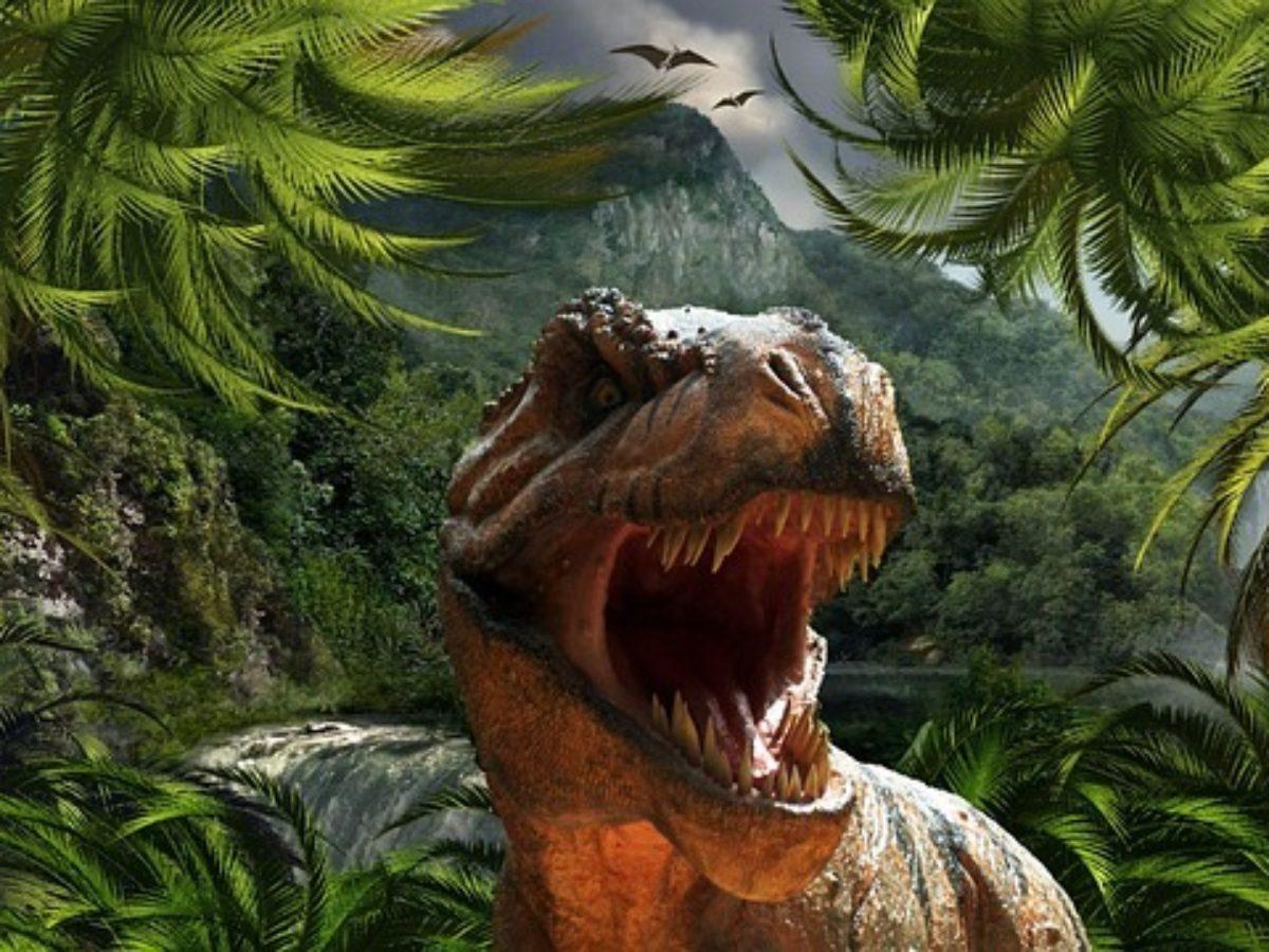 Diferencia Entre Dinosaurios Herbivoros Y Carnivoros Enterate Aunque el origen exacto y su diversificación temprana es tema de activa investigación, el consenso científico actual sitúa su origen entre 231 y 243 millones de años atrás. diferencia entre dinosaurios