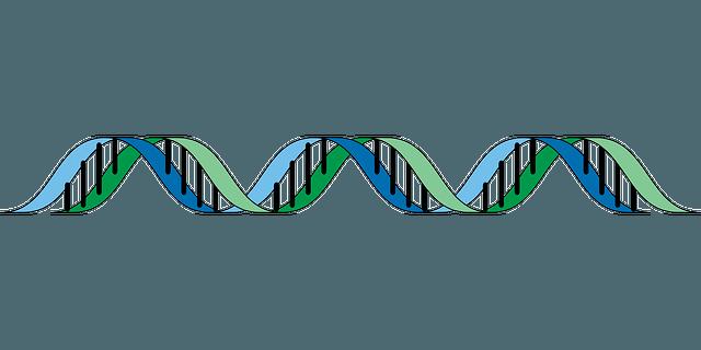 Diferencia entre Genotipo y Fenotipo