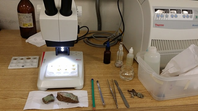 Diferencia entre Microscopio y Estereoscopio